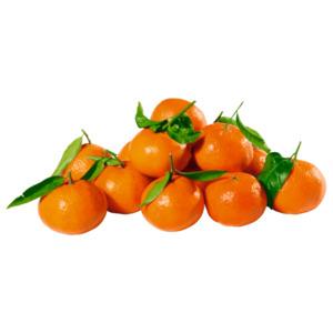Blatt Goldstücke Clementinen