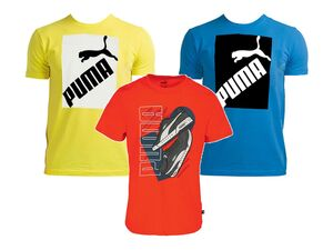 Puma Herren T-Shirt, Regular Fit