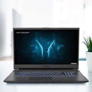 "43,9cm (17,3"") Core Gaming Notebook MEDION® ERAZER®  Defender P101"