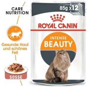 Royal Canin Intense Beauty 12x85g in Soße