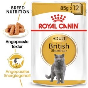 Royal Canin British Shorthair 12x85g
