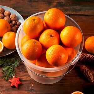"""Ein Eimer voll Orangen """"Navelinas"""" aus Spanien mindestens 5,5 kg, Kl. II, je Eimer"""