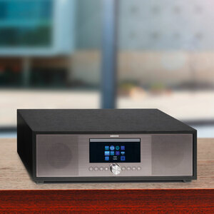 All-in-One-Audio-System MEDION® P66024 (MD 44100)