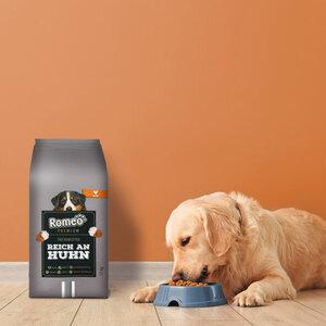 Hundetrockenfutter Romeo Premium, 12 kg