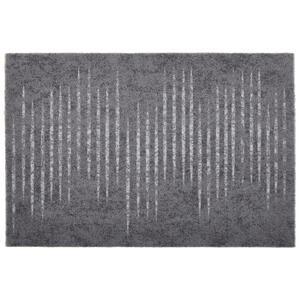 Esposa Fußmatte 60/90 cm streifen grau, hellgrau, dunkelgrau , Cleanfix , Textil , 60x90 cm , 001250078892