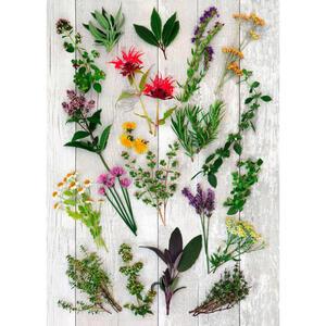 Esposa Geschirrtuch-set 3-teilig , Flower , Gelb, Grün, Multicolor , Textil , Blume , 50x70 cm , 006254000101