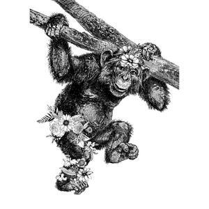 Esposa Geschirrtuch-set 3-teilig , Animal , Schwarz, Weiß , Textil , Tier , 50x70 cm , 006254000201