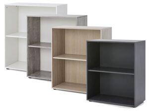 Wilmes Serie Maxi-Office, Regal breit mit 2 Fächern
