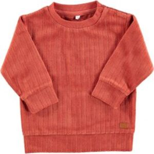 Baby Sweater Jungen