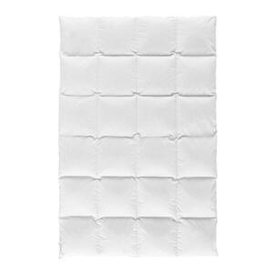 Centa-Star KASSETTENDECKE 135/200 cm , 5224.21 White Diamond Warm , Weiß , Textil , 135x200 cm , Flachgewebe , temperaturausgleichend, feuchtigkeitsregulierend, weich und anschmiegsam, atmungsaktiv