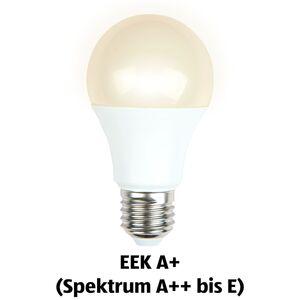 LIGHTWAY LED-Birne/-Kerze/-Tropfen, dimmbar