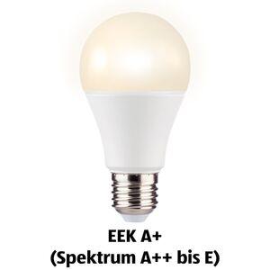 LIGHTWAY LED-Birne, dimmbar