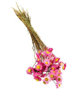 Trockenblumenbund Papierblume