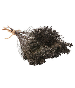 Trockenblumenbund Broom Bloom