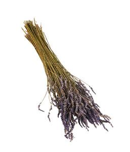 Trockenblumenbund Lavendel