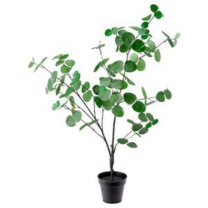 FEJKA Topfpflanze, künstlich, drinnen/draußen Eukalyptus