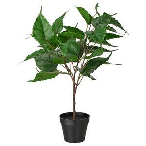 FEJKA Topfpflanze, künstlich, drinnen/draußen Feige