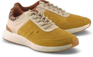 TOMS, Sneaker Arroyo in senf, Sneaker für Damen