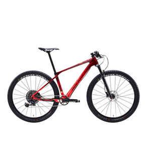 Mountainbike 29 Zoll Rockrider XC 900 Carbon