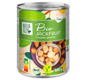 NATURGUT Bio Jackfruit