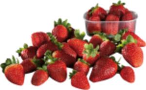 Griechenland Erdbeeren