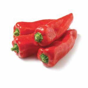 Spitzpaprika rot
