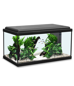 Aquatlantis Advance 60 LED Aquarium Set