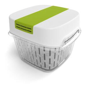 Rotho Aufbewahrungsbox , 1025605070 , Transparent, Pastellgrün , Kunststoff , 15.5x15.5x12.3 cm , glänzend , Deckel abnehmbar, stapelbar, lebensmittelecht , 003294036801