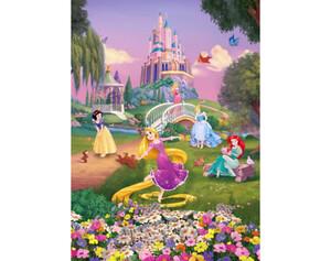 Fototapete Disney Prinzessinnen, Papier, ca. 184 x 254 cm