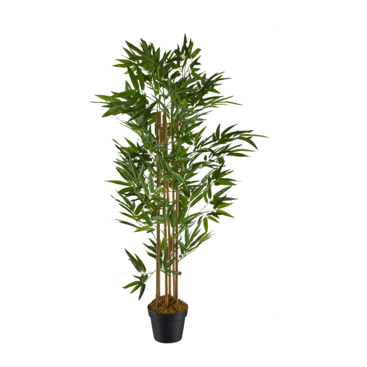 Bild 2 von LIVING ART     Künstliche Pflanze