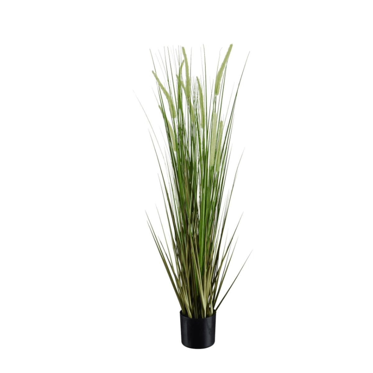 Bild 3 von LIVING ART     Künstliche Pflanze