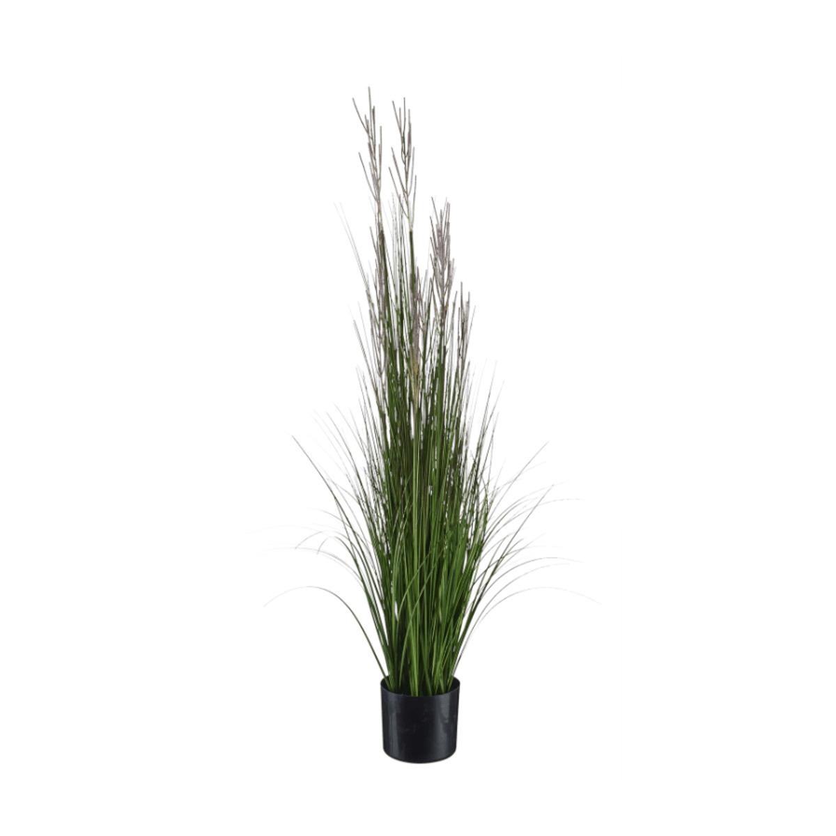 Bild 4 von LIVING ART     Künstliche Pflanze