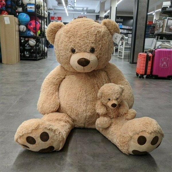 Kuschelfreund Teddybär