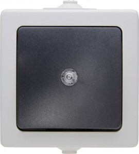 Kopp Feuchtraum-Taster Nautic mit Linse ,  grau, beleuchtbar