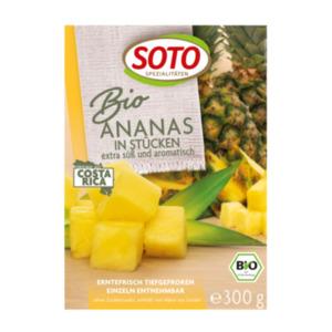 Soto veg. Spezialitäten Tiefkühl-Früchte