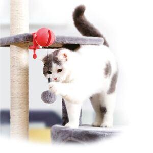 Katzenspielzeug Fang den Ball