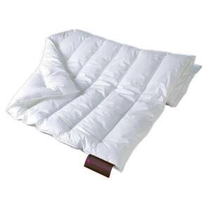 Centa-Star Winterbett royal 200/200 cm , 0873.00 Royal , Weiß , Textil , 200x200 cm , Flachgewebe , für Hausstauballergiker geeignet, temperaturausgleichend, weich und anschmiegsam , 003503080501