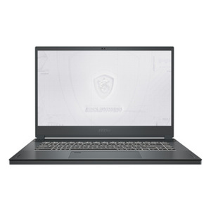 "MSI WS66 10TL-220 - 15,6"" FHD, Intel i7-10875H, 32GB RAM, 1TB SSD, Quadro RTX4000, Windows 10 Pro"