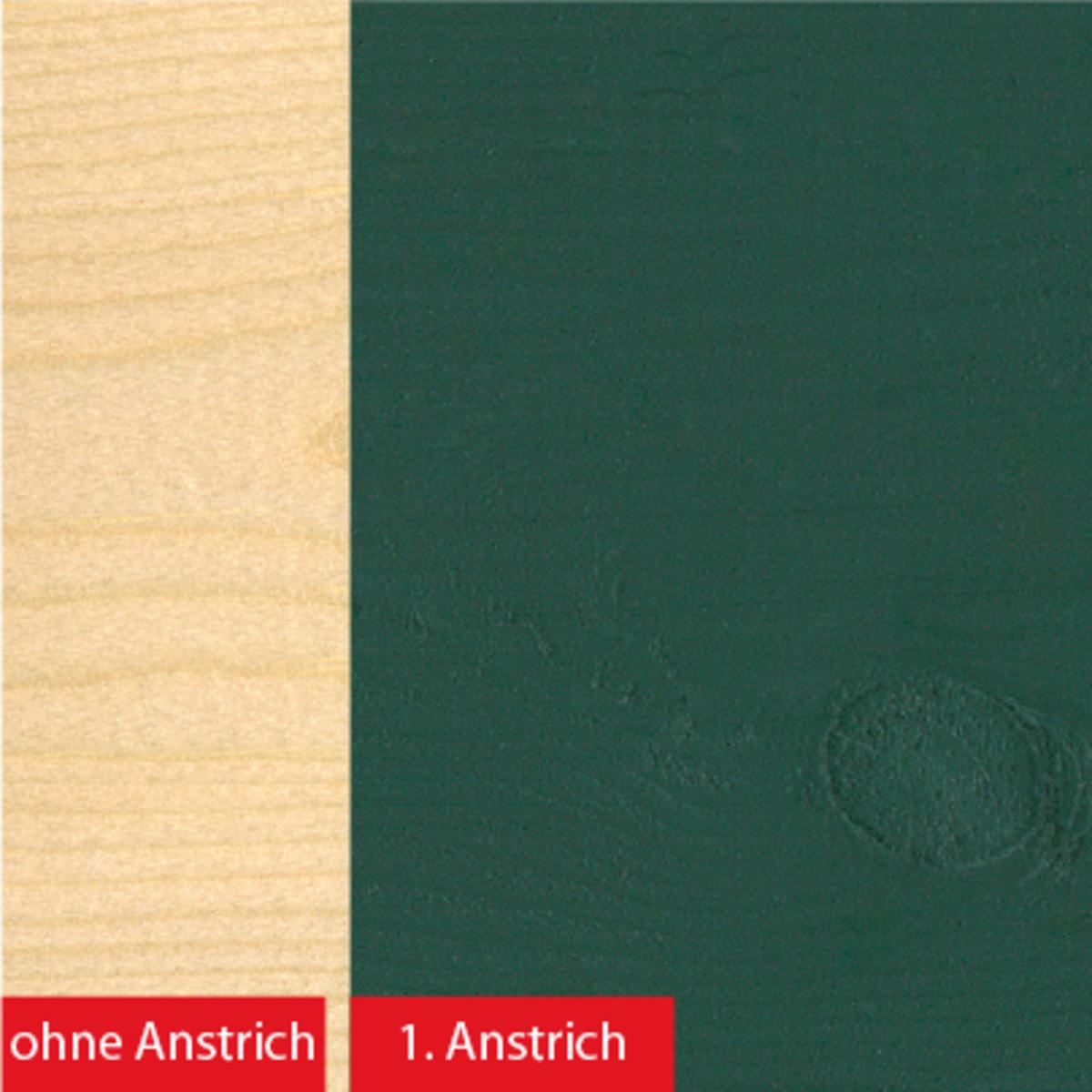 Bild 2 von BAUFIX 2in1 Express Deckfarbe grün 2,5 L 2er Set