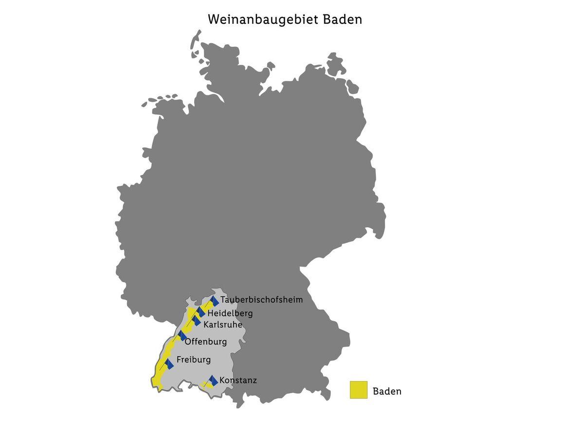 Bild 2 von Junge Winzer Spätburgunder Baden QbA, Rotwein 2013