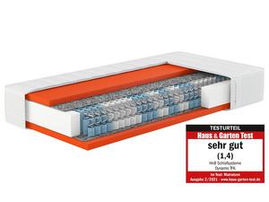 Hn8 Schlafsysteme 7-Zonen Tonnen-Taschenfederkernmatratze Dynamic TFK
