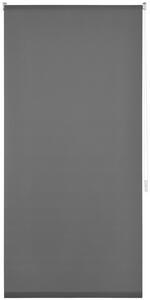 Klemmrollo Daylight, ca. 75x150cm