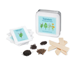 Anzucht-Set »Teekräuter«