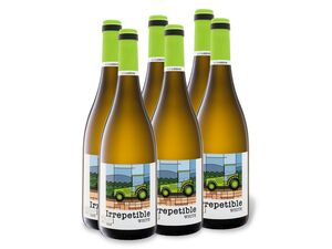 6 x 0,75-l-Flasche Weinpaket OJOS DE MOYA Manchuela DO trocken, Weißwein