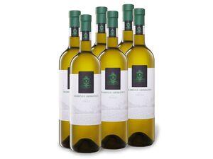 6 x 0,75-l-Flasche Weinpaket Traminer Aromatico Friuli DOC trocken, Weißwein