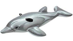 Reittier Kleiner Delphin