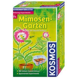 Mimosen Garten Mitbringexperimente Kosmos