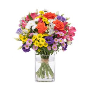 Geburtstagswunsch - | Blumen verschicken
