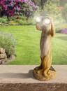 Bild 1 von I-Glow LED-Solar-Erdmännchen mit Fernglas