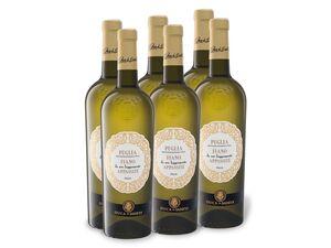 6 x 0,75-l-Flasche Weinpaket Duca di Sasseta Fiano da uve leggermente Appassite Puglia IGT halbtrocken, Weißwein